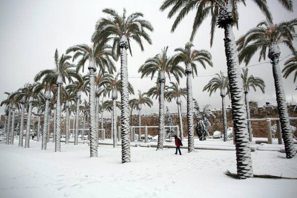 TOPSHOTS A man walks in snow near palm trees outside Jerusalem's old city on February 20, 2015. People in Jerusalem woke up to around 25 centimetres of snow after the second major blizzard of winter swept across the hilltop Holy City. AFP PHOTO /MENAHEM KAHANA